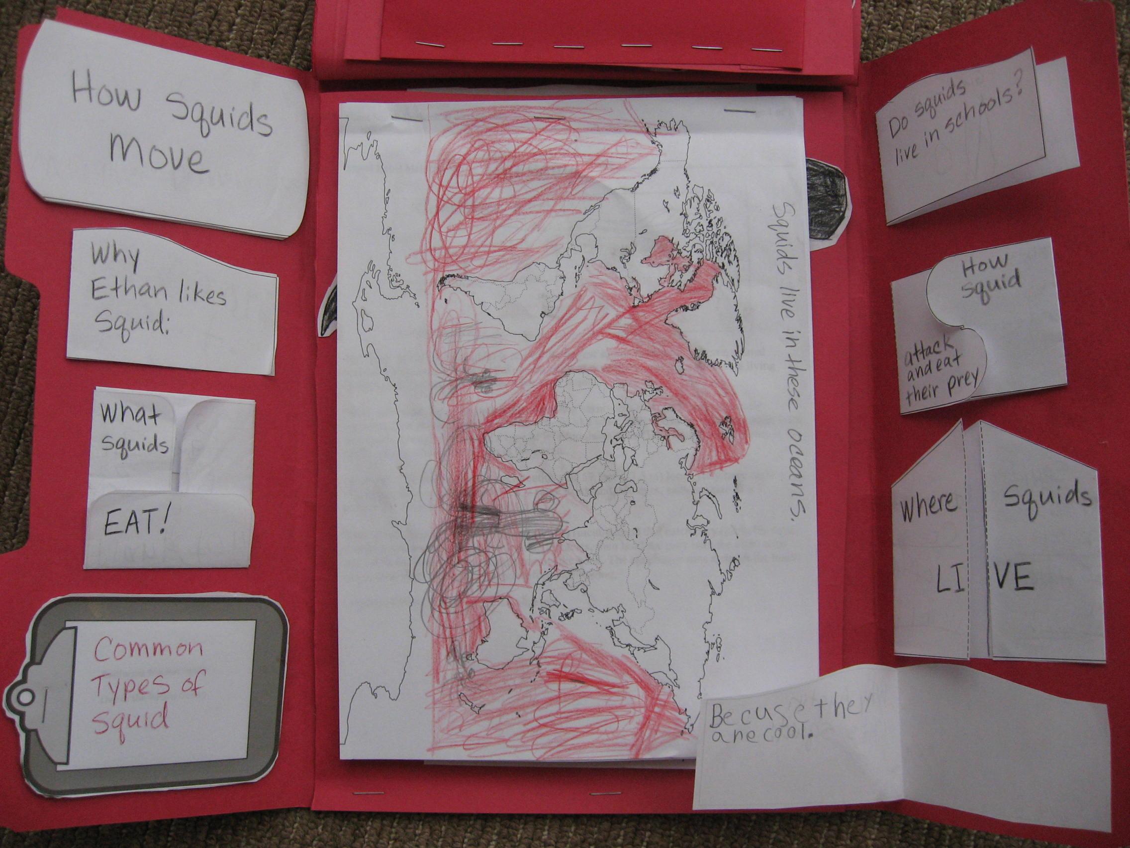 Squid Lapbook | Precious Treasures