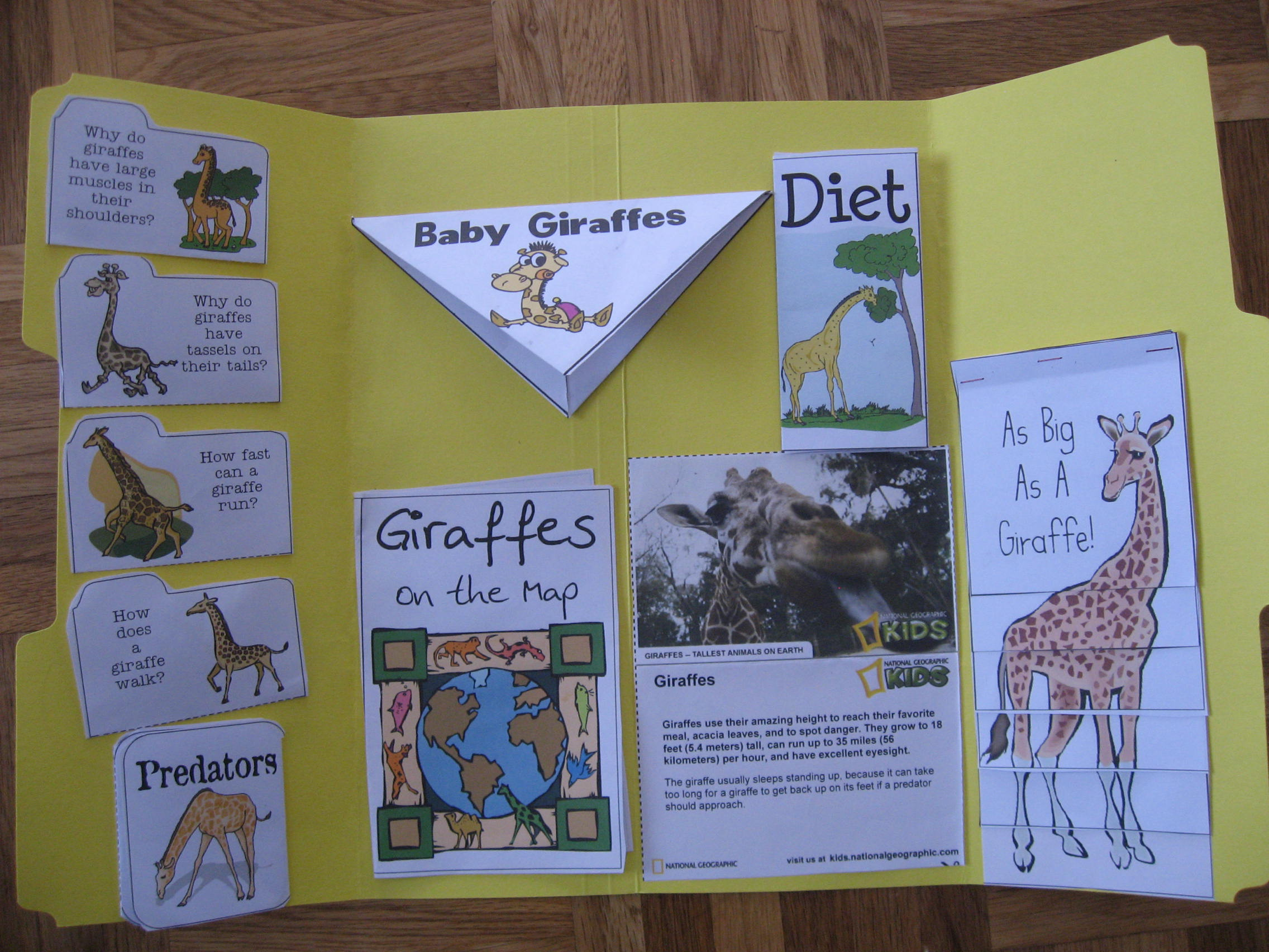 re entering the world of lapbooking giraffes