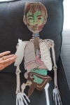 Paper model of the skeleton and organ systems